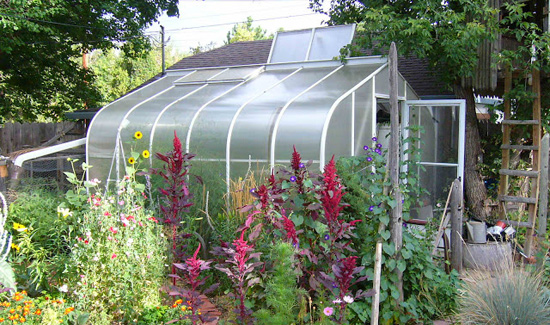 Greenhouse gardening organic growing basics buying for Home garden greenhouse design